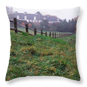 Nyala Fog Throw Pillow