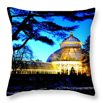 Throw Pillow featuring the photograph Nybg Winter Scene by Aurelio Zucco