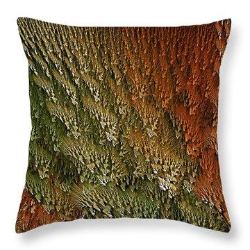 Nydntwar Frostlands Throw Pillow