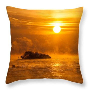 O Happy Day Throw Pillow by Davorin Mance