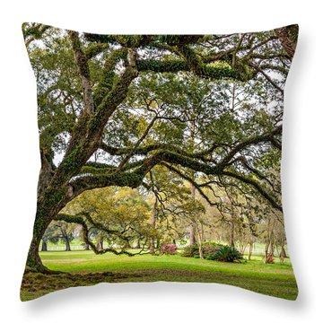 Oak Alley Reverie Throw Pillow by Steve Harrington