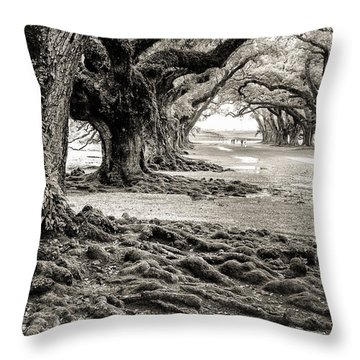 Oak Alley Throw Pillow by William Beuther