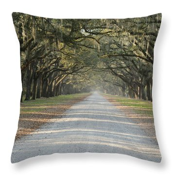 Throw Pillow featuring the photograph Oak Avenue by Bradford Martin