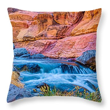 Oak Creek In The Spring Throw Pillow by Fred Larson