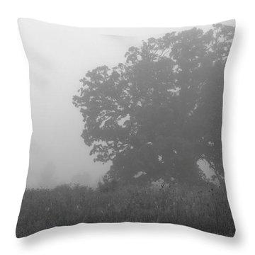 Oak In The Fog Throw Pillow