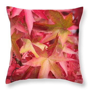 Throw Pillow featuring the photograph Oak Leaves In The Fall by E Faithe Lester