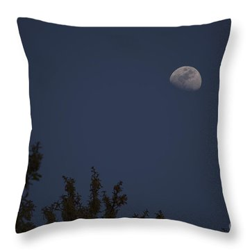 Oak Moon - Color Throw Pillow by D Wallace
