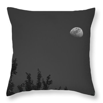 Oak Moon - Bw Throw Pillow by D Wallace