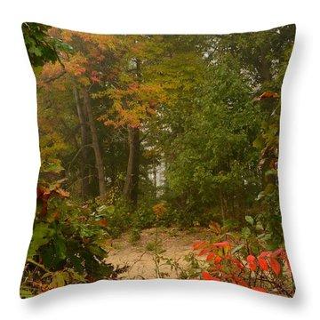 Oak Openings  Throw Pillow