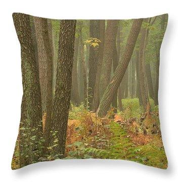 Oak Openings Fog Forest Throw Pillow