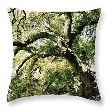 Throw Pillow featuring the photograph Oak Spirit by Kathy Bassett