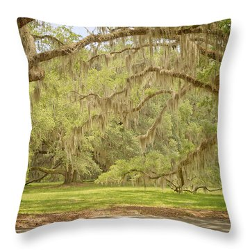 Oak Trees Draped With Spanish Moss Throw Pillow by Kim Hojnacki