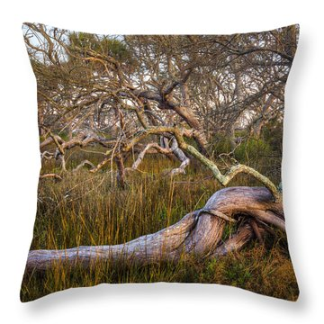 Oak Trees In The Marsh Throw Pillow by Debra and Dave Vanderlaan