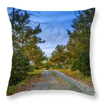Oakfield Provincial Park Throw Pillow by Ken Morris
