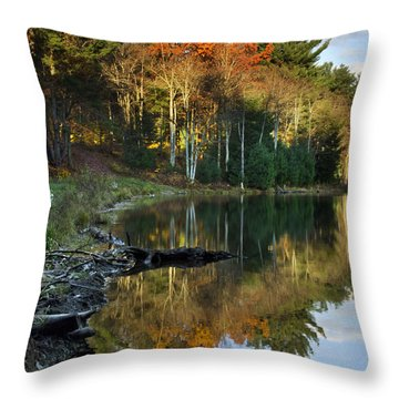 Throw Pillow featuring the photograph Oakley Corners State Forest by Christina Rollo