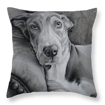 Oakley Throw Pillow