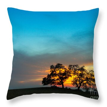 Throw Pillow featuring the photograph Oaks And Sunset 2 by Terry Garvin