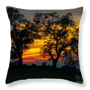 Throw Pillow featuring the photograph Oaks And Sunset by Terry Garvin