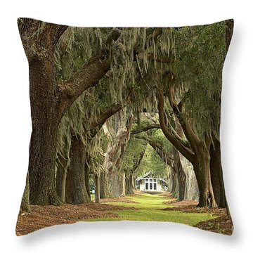 Oaks Of The Golden Isles Throw Pillow
