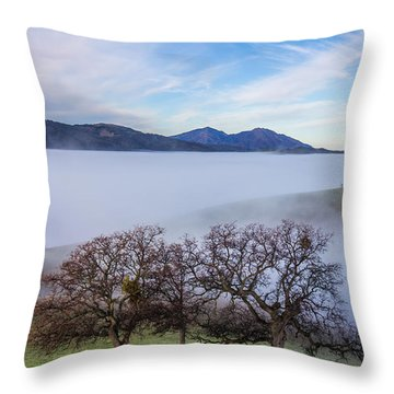 Oaks On A Hill And Mt. Diablo Throw Pillow