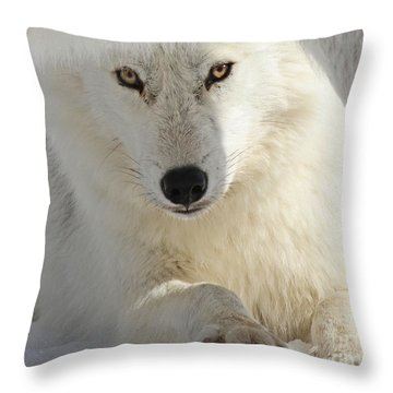 Throw Pillow featuring the photograph Obedience by Heather King
