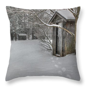 Occupied Throw Pillow by Lori Deiter