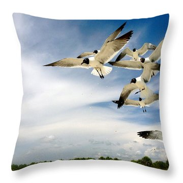 Ocean Birds Throw Pillow by Iconic Images Art Gallery David Pucciarelli