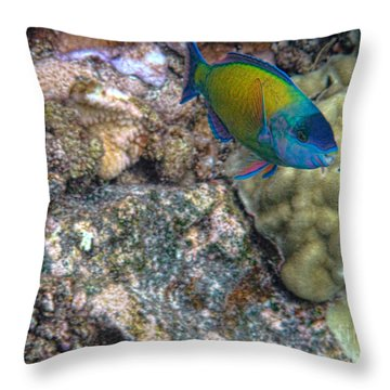 Throw Pillow featuring the photograph Ocean Color by Peggy Hughes