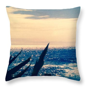 Throw Pillow featuring the photograph Ocean View  by Alohi Fujimoto