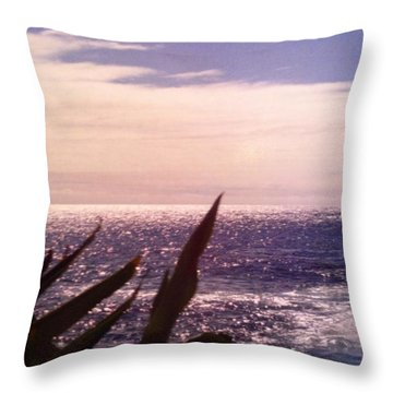 Throw Pillow featuring the photograph Ocean View II by Alohi Fujimoto