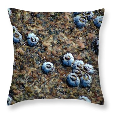Throw Pillow featuring the photograph Ocean's Quilt by Christiane Hellner-OBrien
