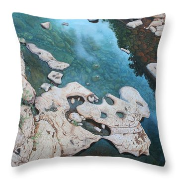 Ocoee River Low Tide Throw Pillow