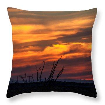 Ocotillo Sunset Throw Pillow by Robert Bales