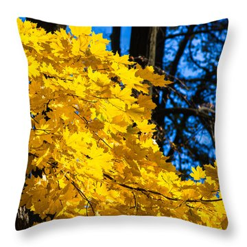 October Blues 10 - Square Throw Pillow by Alexander Senin