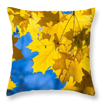 October Blues 8 - Square Throw Pillow