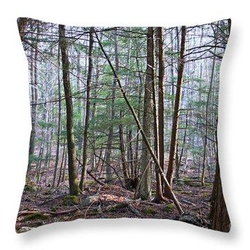 October Mountain  Throw Pillow