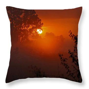 October Sunrise Throw Pillow by Judy  Johnson