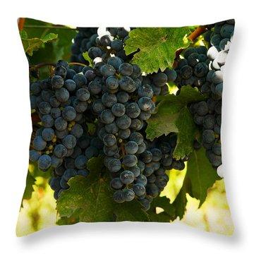 October Vintage Bonair Winery  Throw Pillow by Jeff Swan