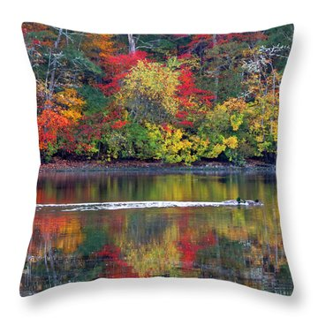 October's Colors Throw Pillow by Dianne Cowen