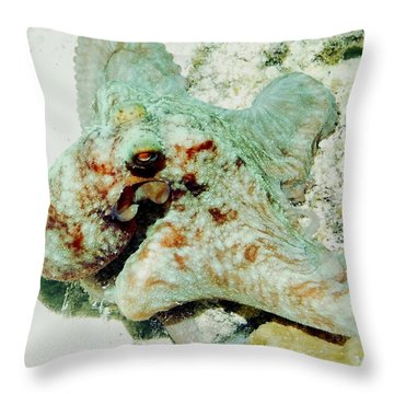 Octopus On The Reef Throw Pillow by Amy McDaniel