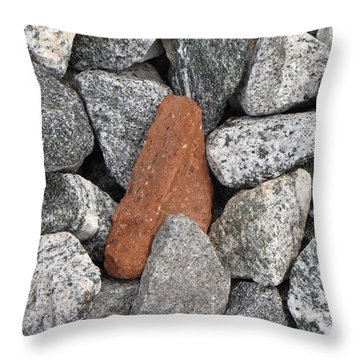 Throw Pillow featuring the photograph Odd Ball by Beth Vincent