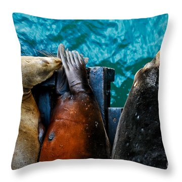 Odd Man Out California Sea Lions Throw Pillow