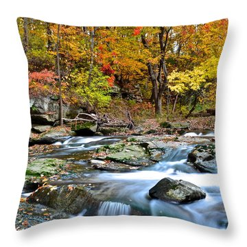 Odd Shape Throw Pillow by Frozen in Time Fine Art Photography