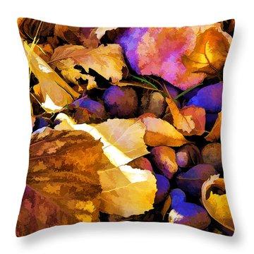 Odds 'n Ends-2 Throw Pillow