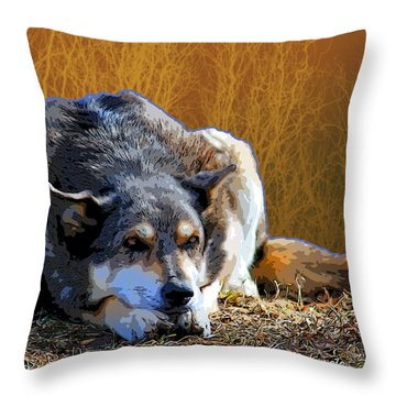 Ode To An Old Dog Throw Pillow by Renee Forth-Fukumoto
