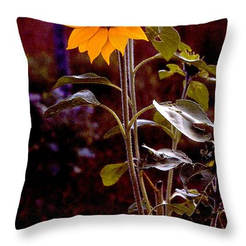 Ode To Sunflowers Throw Pillow by Patricia Keller