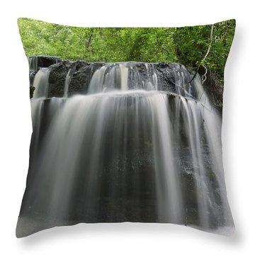Odom Creek Waterfall Georgia Throw Pillow by Charles Beeler