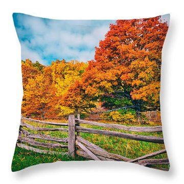 Odyssey In Color I Throw Pillow by Dan Carmichael
