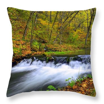 Off The Beaten Path Throw Pillow by Bonfire Photography