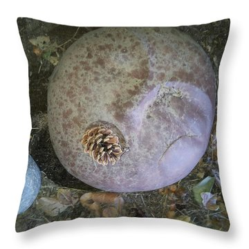 Throw Pillow featuring the photograph Offering To First People by Kristen R Kennedy